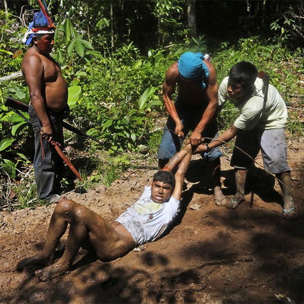 Амазонка,индейцы,браконьерство, Как индейцы Амазонки сражаются за свои деревья