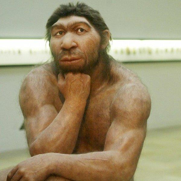 Исследование,история,археология,культура,общество,религия, Фотогеничные неандертальцы добывали огонь с помощью химии